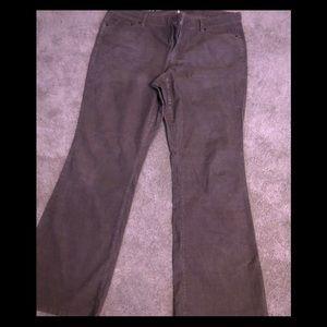 LOFT  boot cut grey corduroy pants